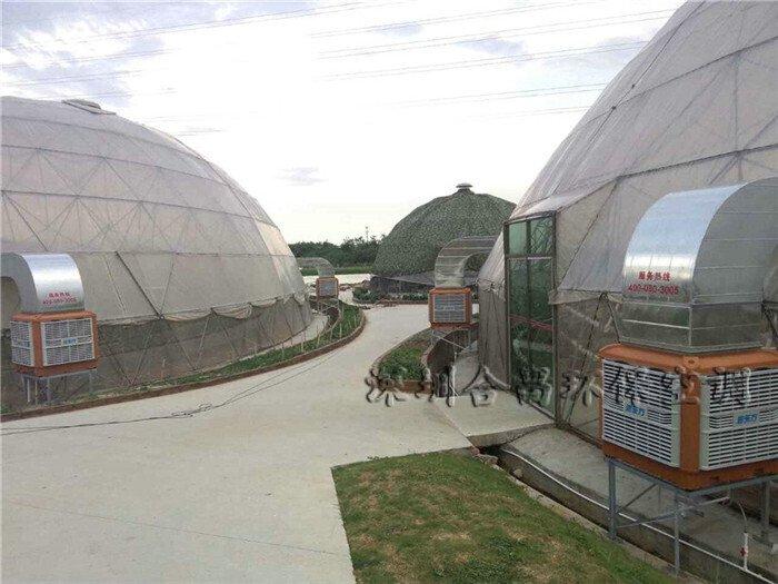大棚植物园降温解决方案